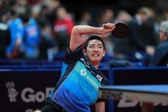KIM Donghyun da rotação da parte superior de Coreia Imagens de Stock Royalty Free