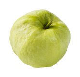 Kim joo guava Stock Images