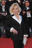 Kim Novak Royalty Free Stock Image