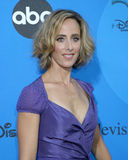 Kim Raver. ABC Television Group TCA Party Kids Space Museum Pasadena, CA July 19, 2006 stock photography