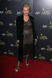 Kim Wilson at the Australian Academy Of Cinema And Television Arts' 1st Annual Awards, Soho House, West Hollywood, CA 01-27-12 Royalty Free Stock Photos