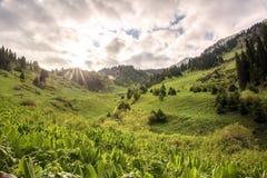 Kimasarovskoe gorge. Stock Images