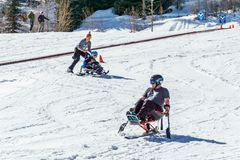 KIMBERLEY, CANADA - MARCH 19, 2019: handicapped person riding a mono ski Vancouver Adaptive Snow Sports. Active activity alpine athlete disability disabled stock photography