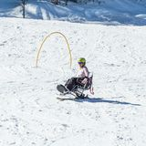 KIMBERLEY, CANADA - MARCH 19, 2019: handicapped person riding a mono ski Vancouver Adaptive Snow Sports. Active activity alpine athlete disability disabled stock images