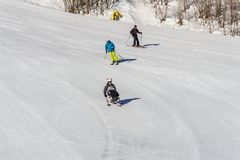KIMBERLEY, CANADA - MARCH 22, 2019: handicapped person riding a sit-skis Vancouver Adaptive Snow Sports. Active, activity, alpine, athlete, disability royalty free stock image