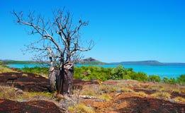 Kimberley wybrzeże Obraz Stock