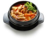 kimchi炖煮的食物 免版税图库摄影