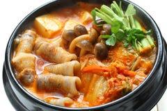 kimchi炖煮的食物 免版税库存照片