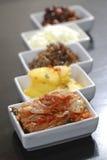 Kimchi Fotografering för Bildbyråer