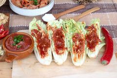 Kimchi di alimento coreano tradizionale Fotografia Stock Libera da Diritti