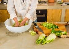 Kimchi et choucroute de chou Photos stock
