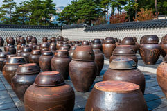 Kimchi krus Royaltyfri Foto