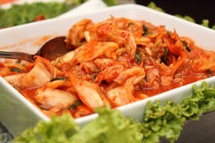 Kimchi  popular Korean dish Stock Images