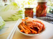 Kimchi traditionell koreansk mat Fotografering för Bildbyråer