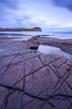 Kimmeridge岩石和壁架咆哮在日落 免版税图库摄影