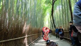 Kimono dans le verger en bambou d'arashiyama à Kyoto Photographie stock libre de droits
