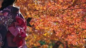 Kimono de Kiyomizudera Photo libre de droits