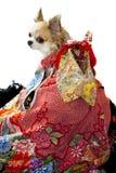 Kimono japonés fotografía de archivo libre de regalías