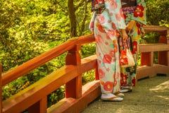 Kimonofrauenbild lizenzfreies stockfoto