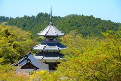 Japan - Yoshino Royalty Free Stock Photos