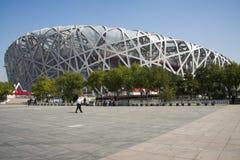 Kina Asien, Peking, den nationella stadion, fågelboet Arkivfoton