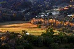 Kina Bashang grässlättlandskap Arkivbild