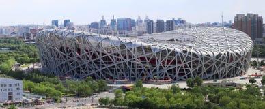 Kina Beijing nationell stadion Panoram royaltyfri bild