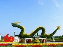 Kina drake Arkivfoto