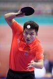 Kina fan Zhendong som spelar under bordtennis Chapionship in Arkivfoton