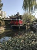 Kina flodstrand arkivbilder