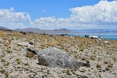 Kina Great Lakes av Tibet Sten med mantras på lagret av sjön Teri Tashi Namtso i solig sommardag royaltyfri foto