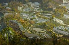 Kina landskap för yunnan landskap Royaltyfria Bilder