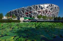 Kina nationell stadion i Beijing royaltyfri fotografi