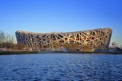 Kina nationell stadion i Beijing royaltyfri foto