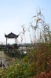 Kina parkerar den nationella våtmarkreserven arkivfoto