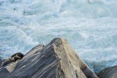 Kina ` s Yunnan Tiger Slope och flöde royaltyfri fotografi