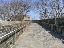 Kina stor vägg med träd i höst och deras skuggor på trottoar Arkivfoto