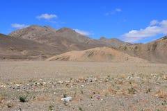Kina Tibet Berglandskap på vägen från Dorchen till Shigatse fotografering för bildbyråer