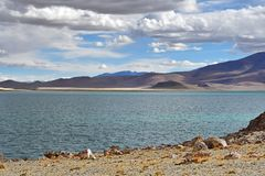 Kina Tibet Helig sj? Chovo Co 4765 M i sommardag royaltyfri bild