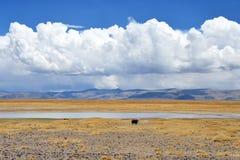 Kina Tibet Stora härliga moln över Trans.-Himalayasna i området av sjön Teri Tashi Nam Co i Juni royaltyfri fotografi