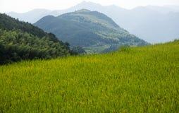 Kina Wenzhou landskap - berglandskap Royaltyfria Foton