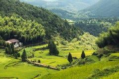 Kina Wenzhou landskap - berglandskap Arkivfoton