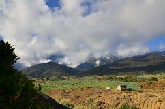 Kinabalu沿海山麓小丘的庭院是那么绿色和那么美丽的景色 图库摄影