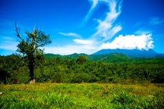 Kinabalu na nuvem fotos de stock royalty free