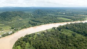 Kinabatangan river from above located in Borneo stock photos