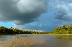 Kinabatangan river, Malaysia, Borneo Stock Photo