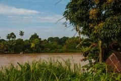 Kinabatangan river, rainforest of Borneo island, Sabah Malaysia. Kinabatangan river, Malaysia, rainforest of Borneo island Sabah stock photo