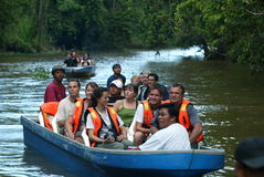 Kinabatangan River Safari. Tourists enjoy a wonderful travel discovery through the beautiful scenery of the Mangrove Forest Kinabatangan River, Sabah, Malaysia Stock Photos