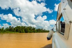 On the Kinabatangan in Borneo. Zipping down the Kinabatangan River in Borneo in a speedboat royalty free stock photography