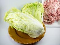 Kinakål i maträtt med finhackat griskött royaltyfri foto